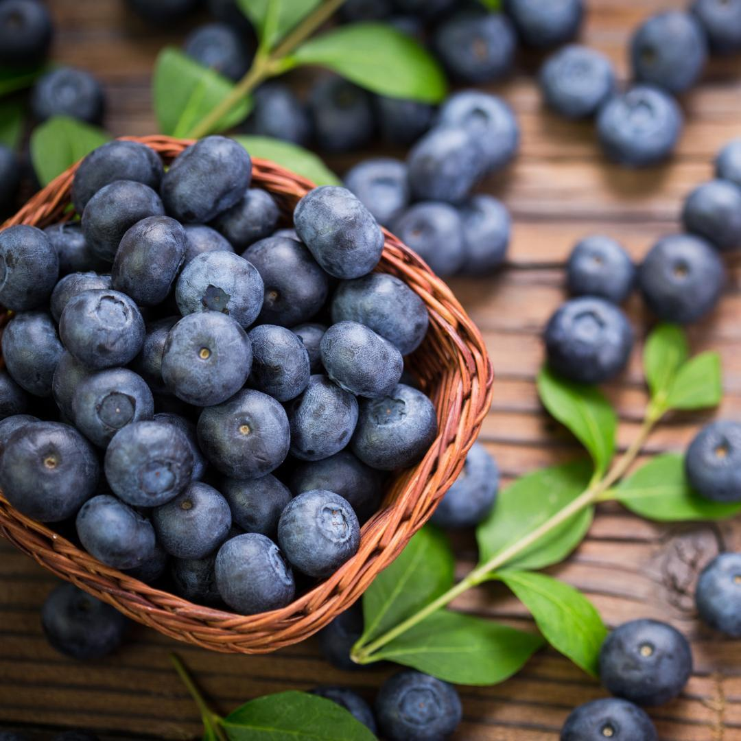 Get your blueberries before they're gone. DownHome Harvest blueberry bushes by Southern Living are disease and pest resistant, heat tolerant, and produce flavorful berries. Just $9.88 each!